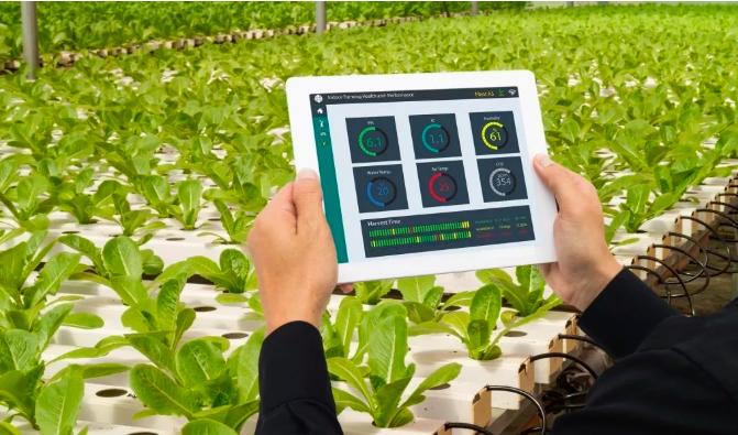 潜力巨大,难点众多,智慧农业之路该怎么走?