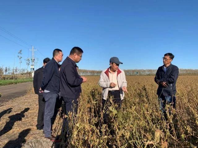 未来农业价值可期!阿里、京东、华为,碧桂园纷纷发力数字农业