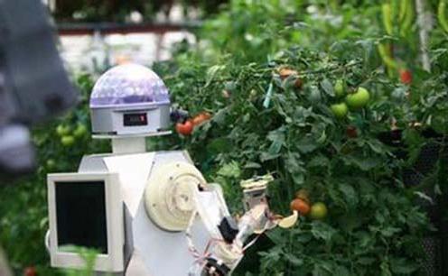 智慧农业是未来农业重要发展方向