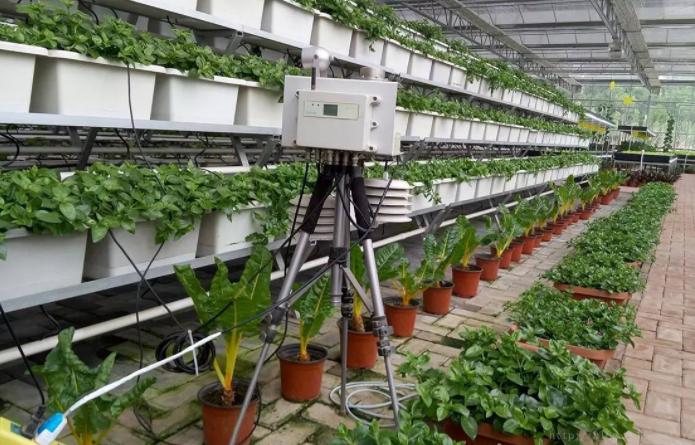 智慧农业是人工智能+农业?