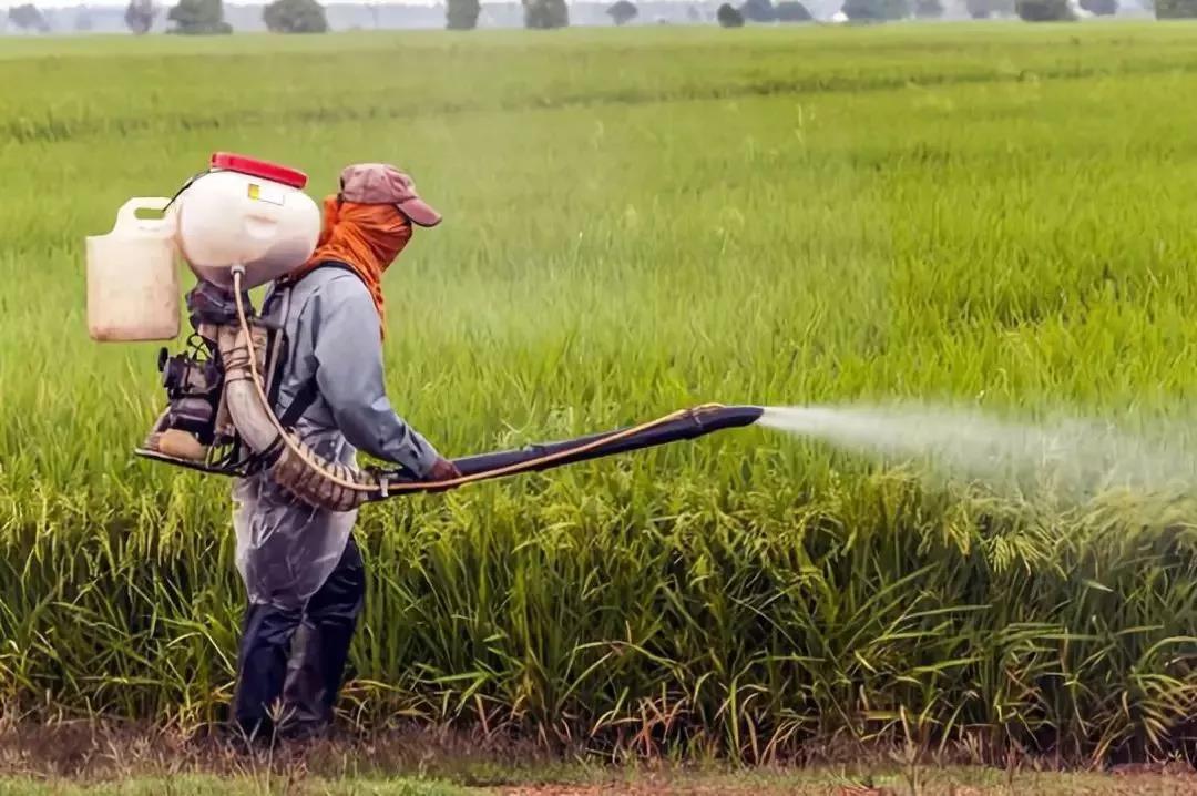 三农日报|未来10年有机农业或领导中国农业;智慧农业的三大应用