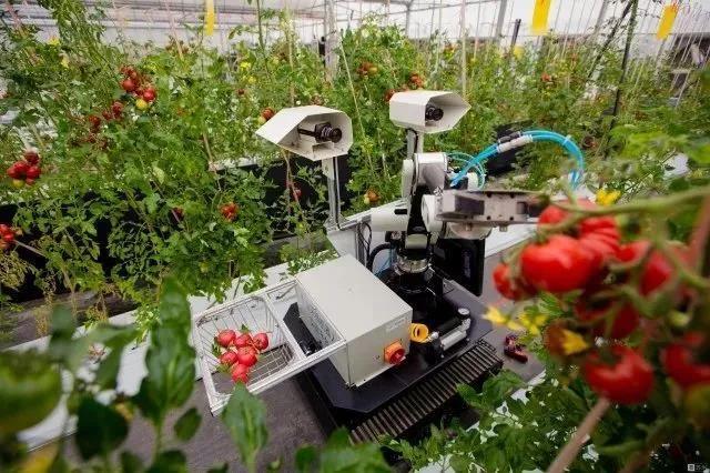 三农日报|智慧农业迎来国家政策红利;国内化肥市场持续低迷