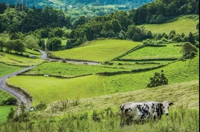 重磅|智慧农业,品牌农业,订单农业,功能农业的下一站:共享农业!