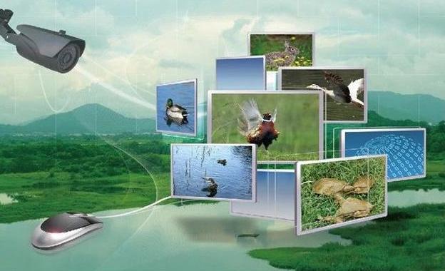 一文读懂智慧农业:行业机会、发展模式、场景应用、未来路线