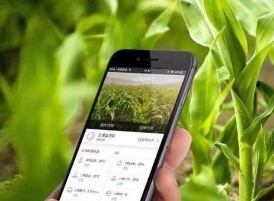 数字时代 农业农村的新技术新模式
