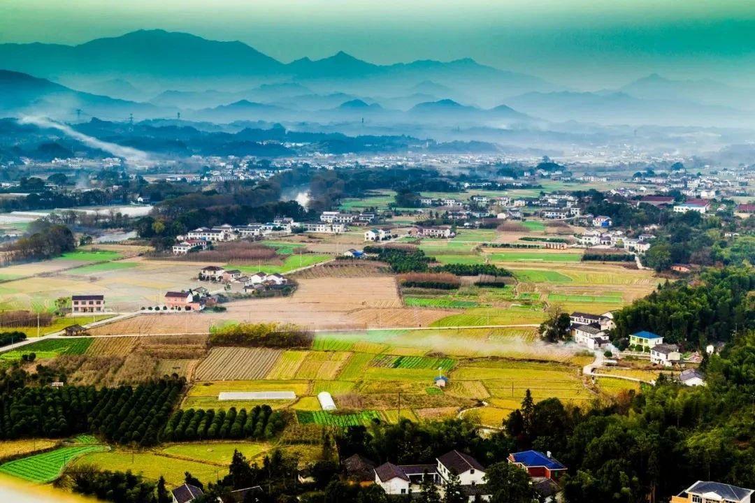 【政策】一图看懂《数字农业农村发展规划(2019-2025年)》