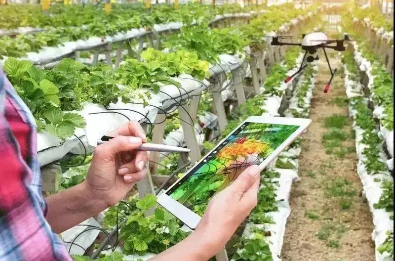 智慧农业|全球十大农业大数据经典案例