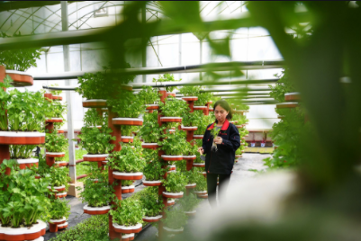 智慧种植:智慧农业对传统农业的改变