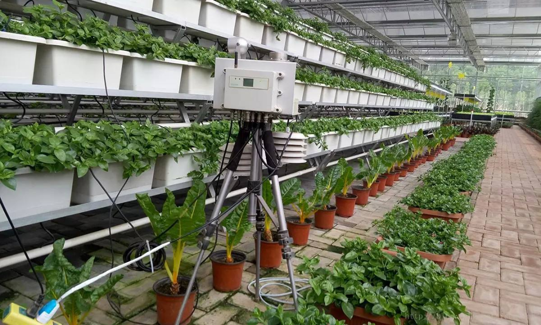 【大佬解读】唐华俊:智慧农业——赋能农业现代化高质量发展