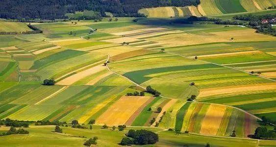 【政策】农业农村部发布《数字农业农村发展规划(2019-2025年)》(附全文)