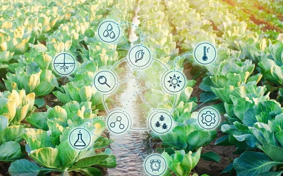 【行业趋势】农业数字革命拉开序幕,中国数字农业发展大势所趋