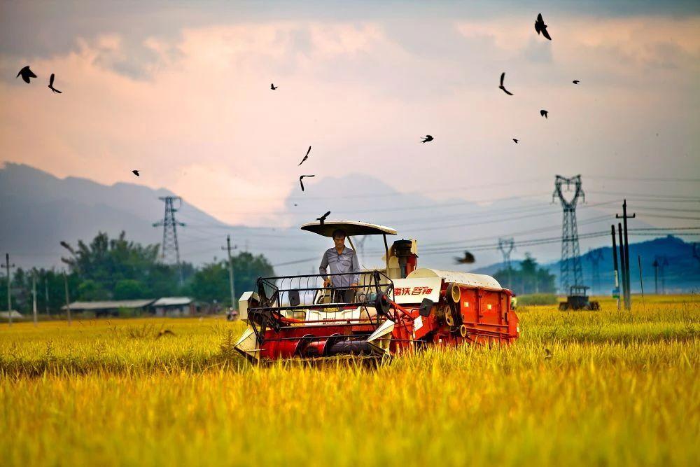 明星艺人纷纷投身农业,于荣光发力智慧农业,不知能否改变行业