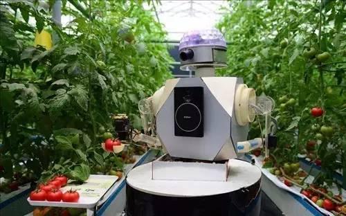 【报告研究】智慧农业研究报告:产业链模式分析