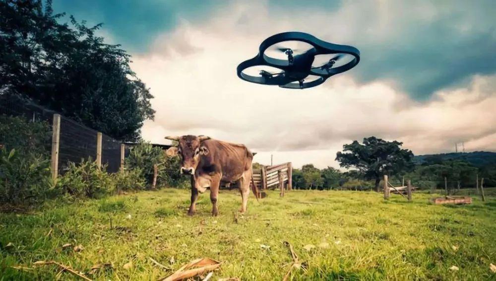 三农日报|规划:强化农业科技、建设智慧农业;王小兵:数字农业研发能力滞后