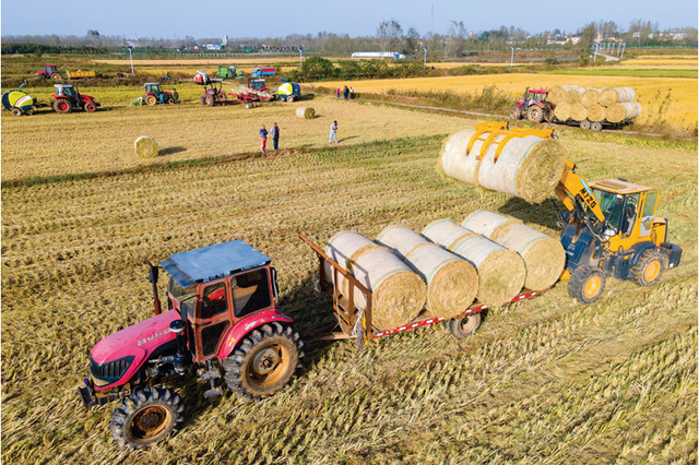三农日报|农业生产托管受益者是小农户;智慧农业中数字服务最广泛