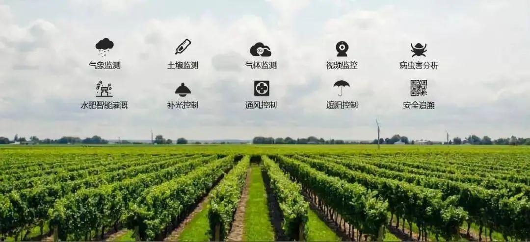 【产业研究】智慧农业的两大技术以及相关应用