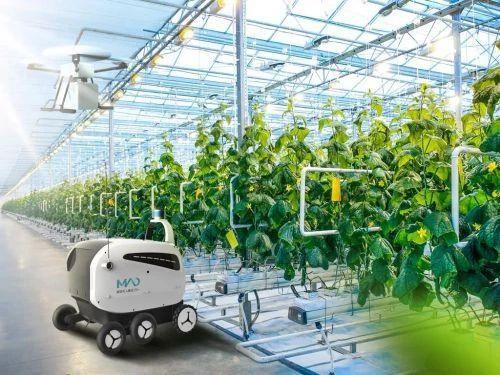未来农业爆破点:植物工厂、智慧农业、功能食品(收藏+转发)