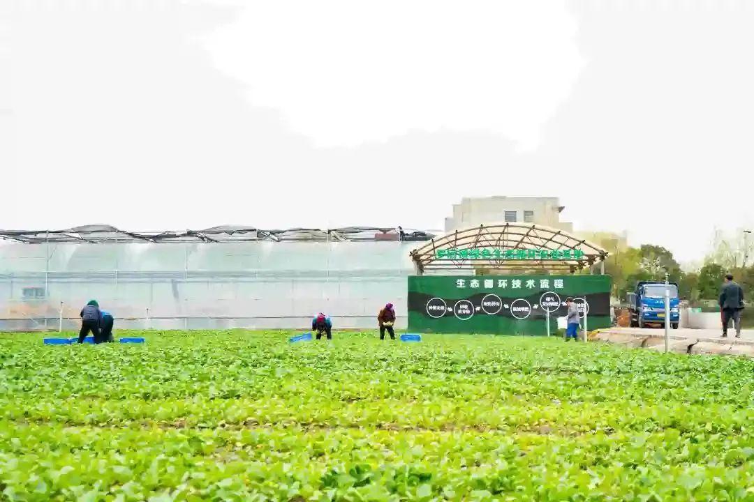 三农日报|政策:加快推进能源生态循环农业;什么是智慧农业和无人农场