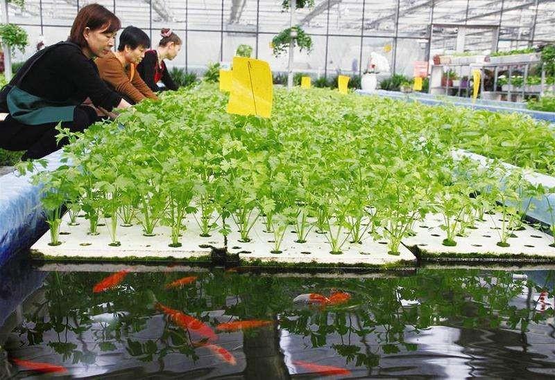 【农政齐民】荣获国家农业部2021数字农业农村新技术新产品新模式推介公示