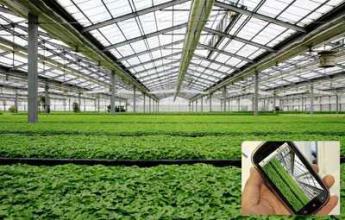 智慧农业是农村发展的趋势吗?