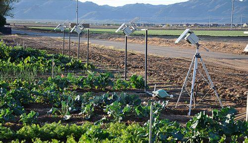 农业大数据,未来智慧农业的发展猜想