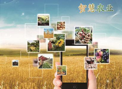 智慧农业有哪些发展趋势?给我们带来哪些好处?