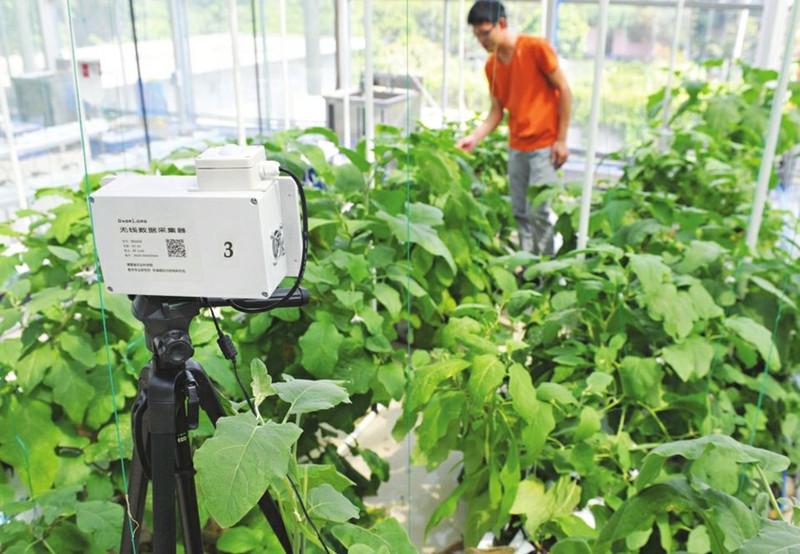 新一轮工业革命已爆发,人工智能必将制霸农业!