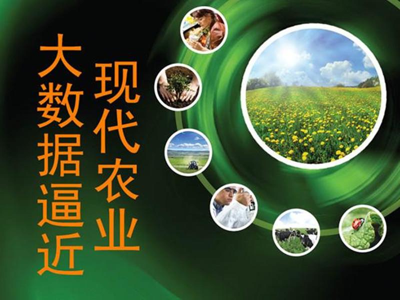 三农日报|中央财政持续加码扶贫;2017稻谷最低收购价首次下调;大数据搅热中国农业
