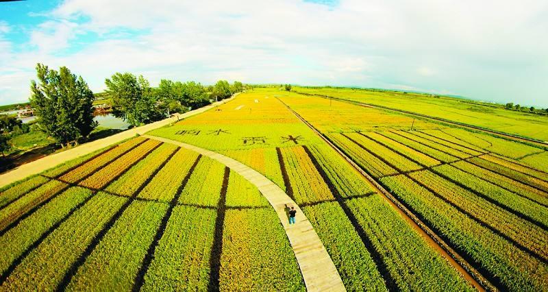 一周回顾|农业产业十大事件盘点:资本运作成为农业大佬的游戏