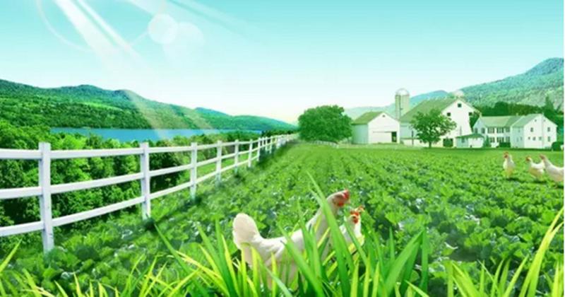 共享经济炙手可热,共享农业还离我们有多远?