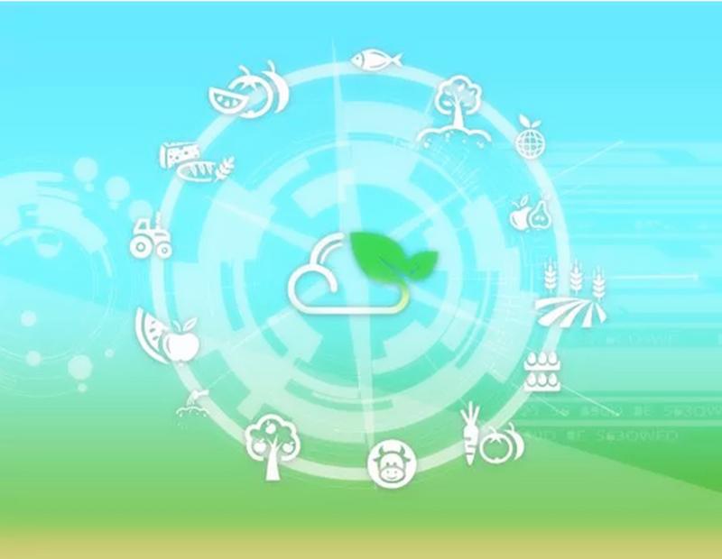 大数据+农业:将掀起一场怎样的农业革命?