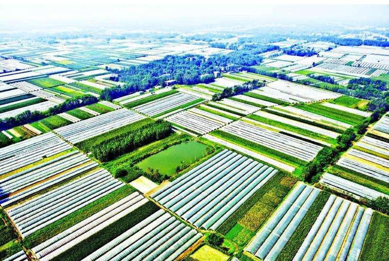 三农日报|2018年11类农业补贴来袭;互联网给农业发展带来的机会是啥?