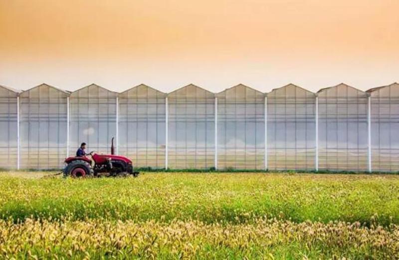 2018年农业有哪些新风口?