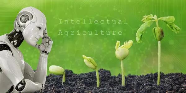 互联网大佬十分看好,农业又迎来暴富的机会!