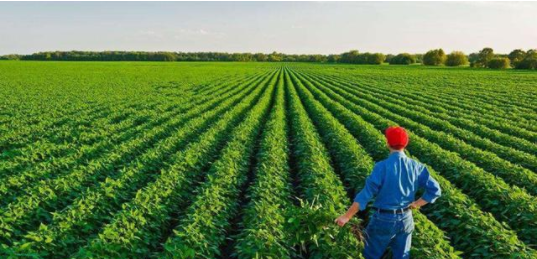 未来农业7大发展方向