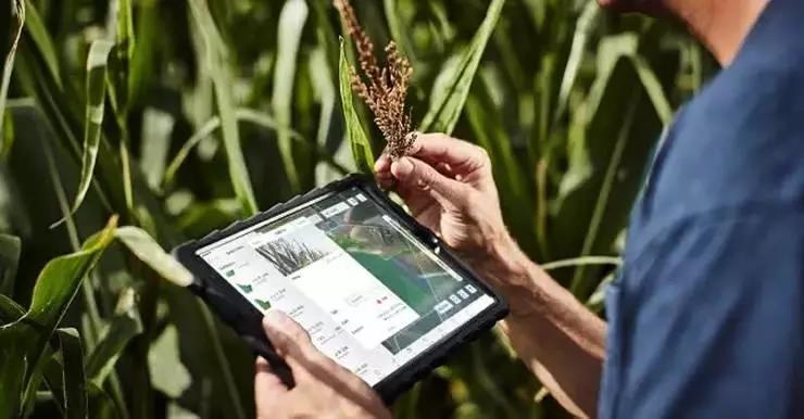 阿里、京东、百度、腾讯纷纷布局AI+农业:他们靠什么赚钱