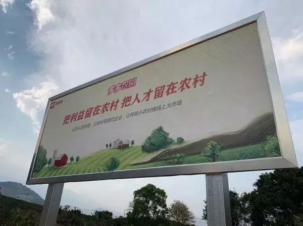 """中国农业迎来""""拼多多式改革"""""""