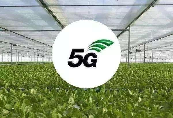 5G农业迈入元年,中国农业迎来新变革,但2大问题必须解决