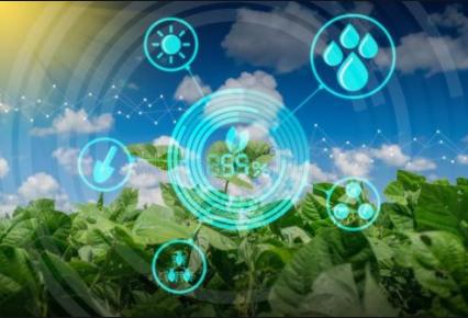 数字农业的发展趋势与推进路径