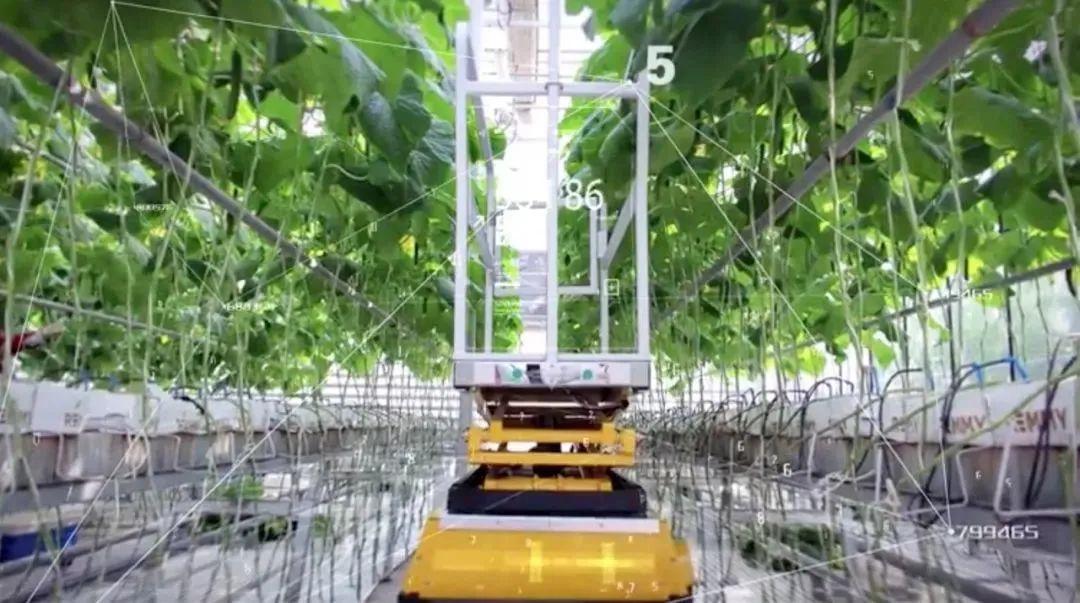 【农业趋势】5G对农业意味着什么