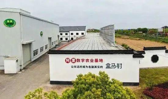 """【企业】阿里的""""盒马村"""" 背后是中国数字农业的未来"""