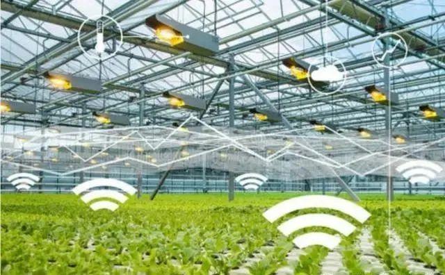 """【行业研究】对""""互联网+""""现代农业的再认识"""