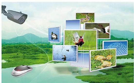 张军研究员:5G+农业,将带来哪些变革