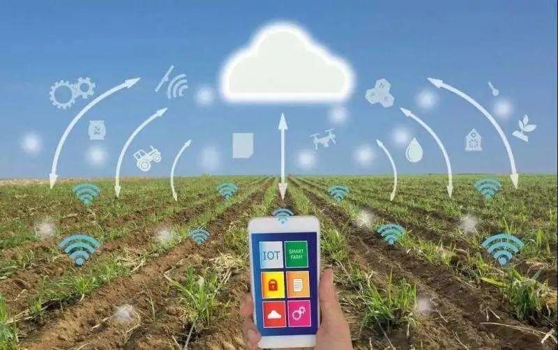 农业加速器!国家加快布局!那么,大数据农业到底有啥应用场景呢