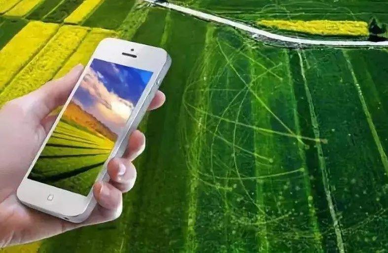 【未来农业】我国数字乡村新变化调查:乡村数字化从哪里起步?