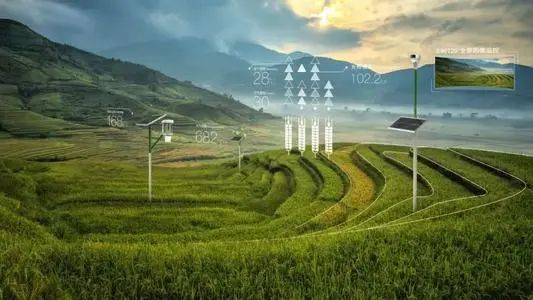 【数字农业】周延礼:未来数字农业要大力发展国产数据模型