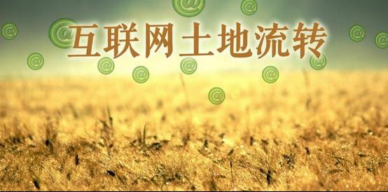 土地风口已来,农民应该如何靠土地发家致富?