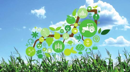互联网+如何促进现代农业发展?