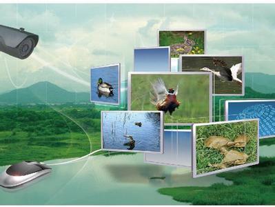 """六大商业模式 撬动""""互联网+农业"""""""