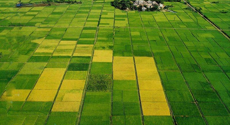 重磅|农业老板注意了!这一信号发布,预示中国农业颠覆即将开始...